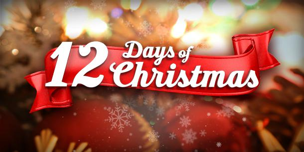12 days of christmas giveaway blog
