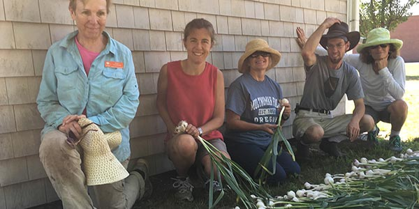 Massachusetts master gardeners gardening horticulture classes workshops