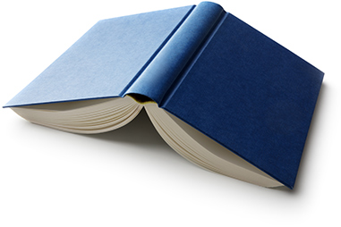Open Blue Book