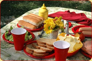 picnic-main.jpg